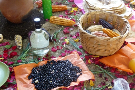 Corn, beans and mescal - staples of the Oaxacan diet