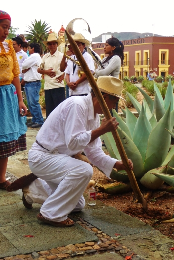 Ceremonial planting of seeds during the performance
