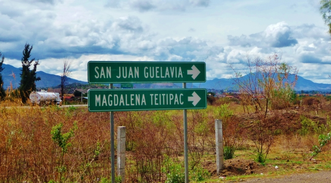 Indigenous Mexican communities unite for sustainable development