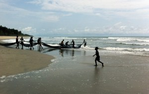Fishers bringing in the nets near Saltpond, Ghana. Photo courtesy of Eileen Delhi.